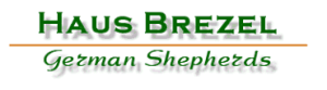 Haus Brezel German Shepherds